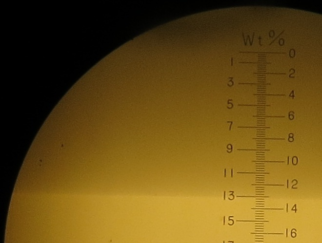 Brix refractometer showing a line at 12.8 degrees brix